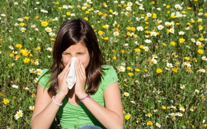 Relief From the Symptoms of Seasonal Allergies